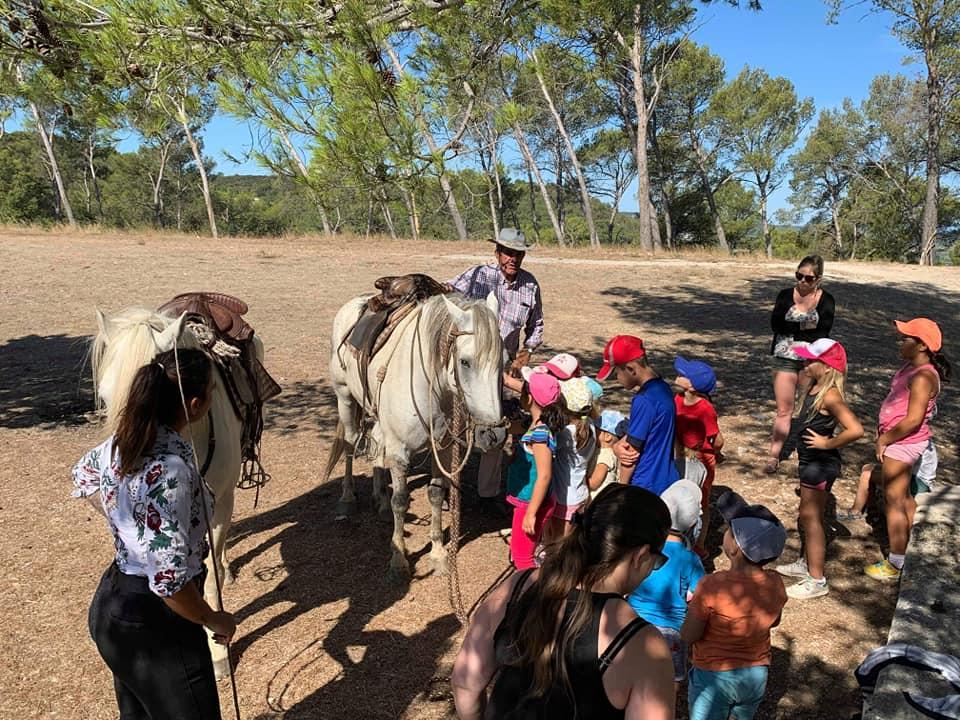 Prestations harnachement cheval camargue sortie pédagogique manade Chaballier selle camargue